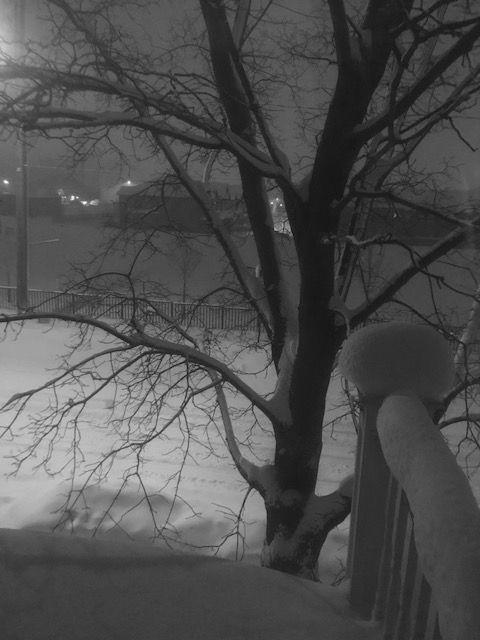 2019 snowy night