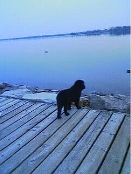 maggie at water
