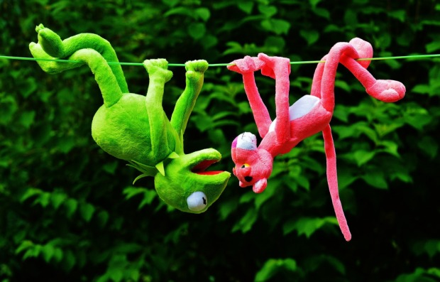 kermit and pink panther