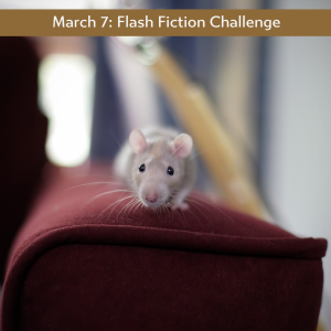 March 7 flash Ficttion Challenge