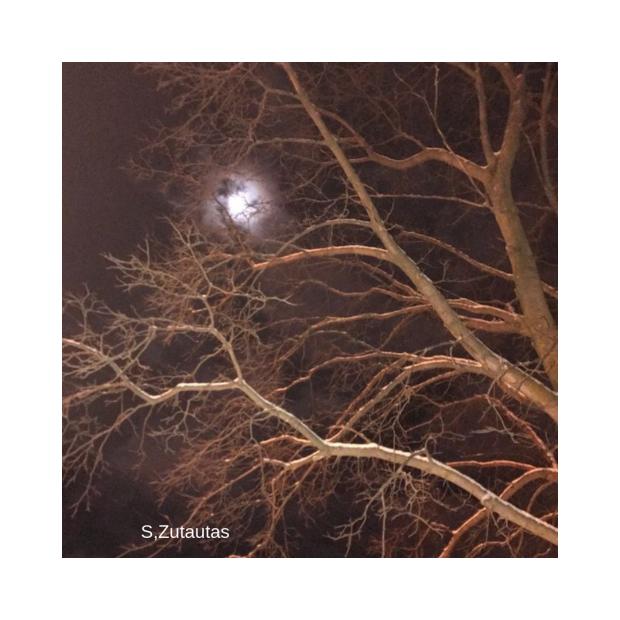 moon spiky