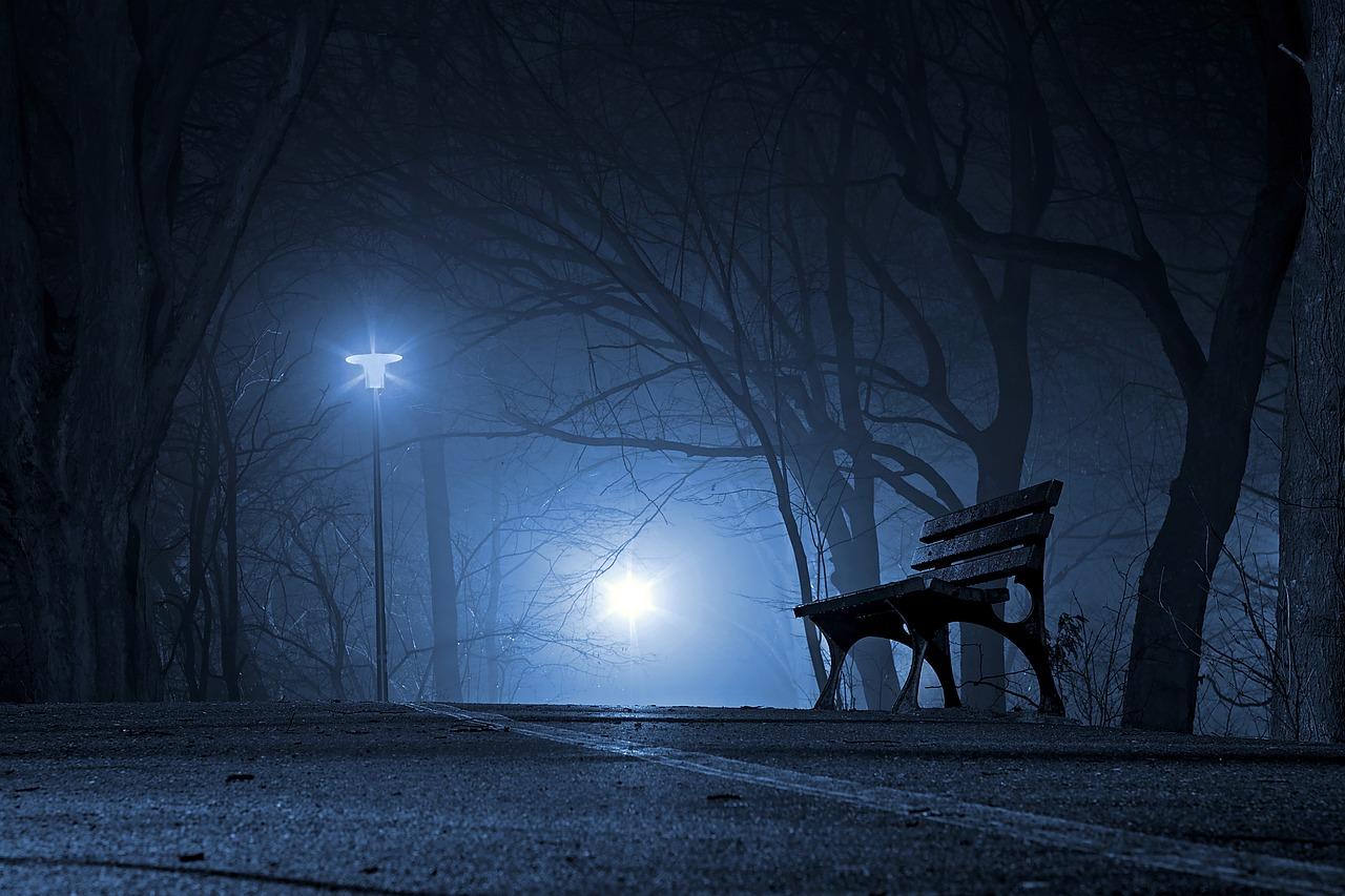 Night Park Silence