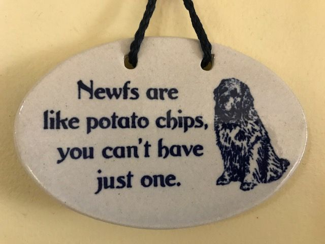 newfs and potato chips