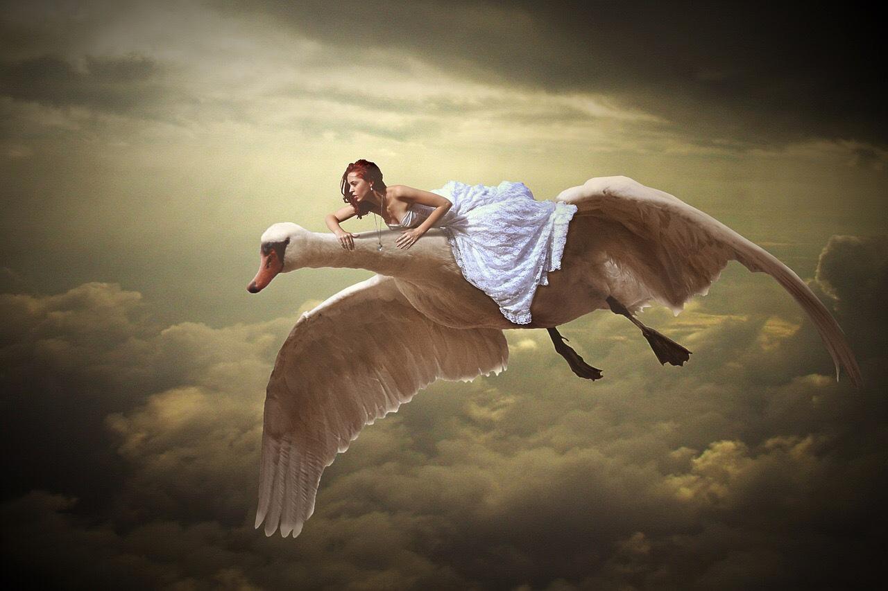 flying duck girl