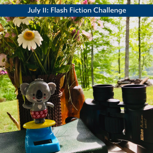 koala flash fiction