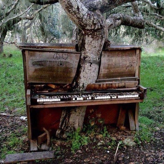 Piano Haiku