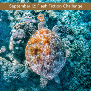 Sept 12 Flash Fiction