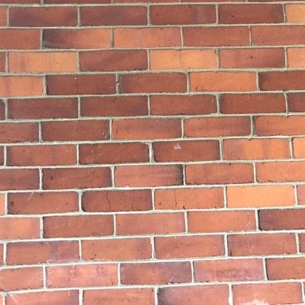 day 10 bricks
