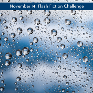 Nov 14 flash fiction