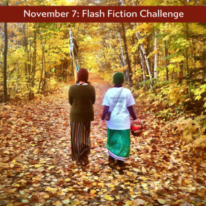 Nov 7 flash fiction