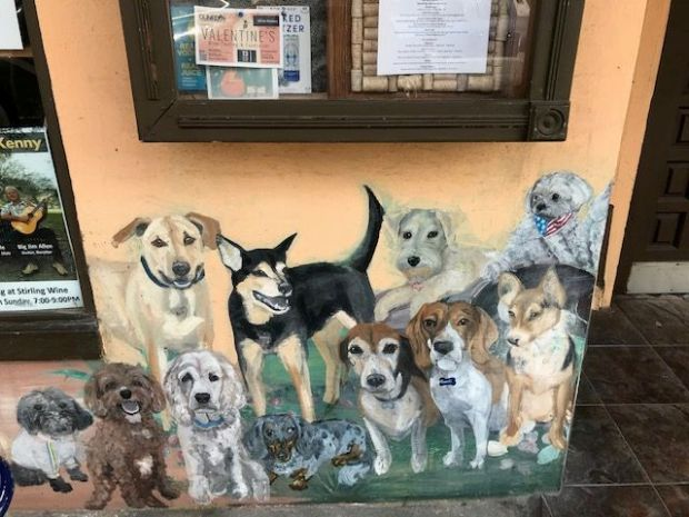 dogs wall