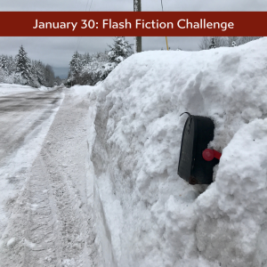 flash fiction Jan 30th 2020