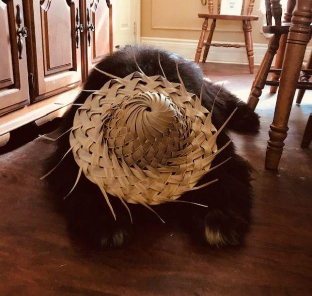 dawson with hat