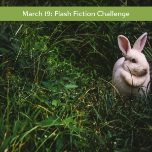 flash fiction rabbit