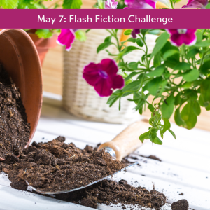 flash fiction May 7